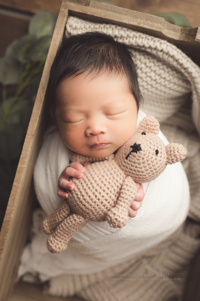 Houston Newborn Photography Packages