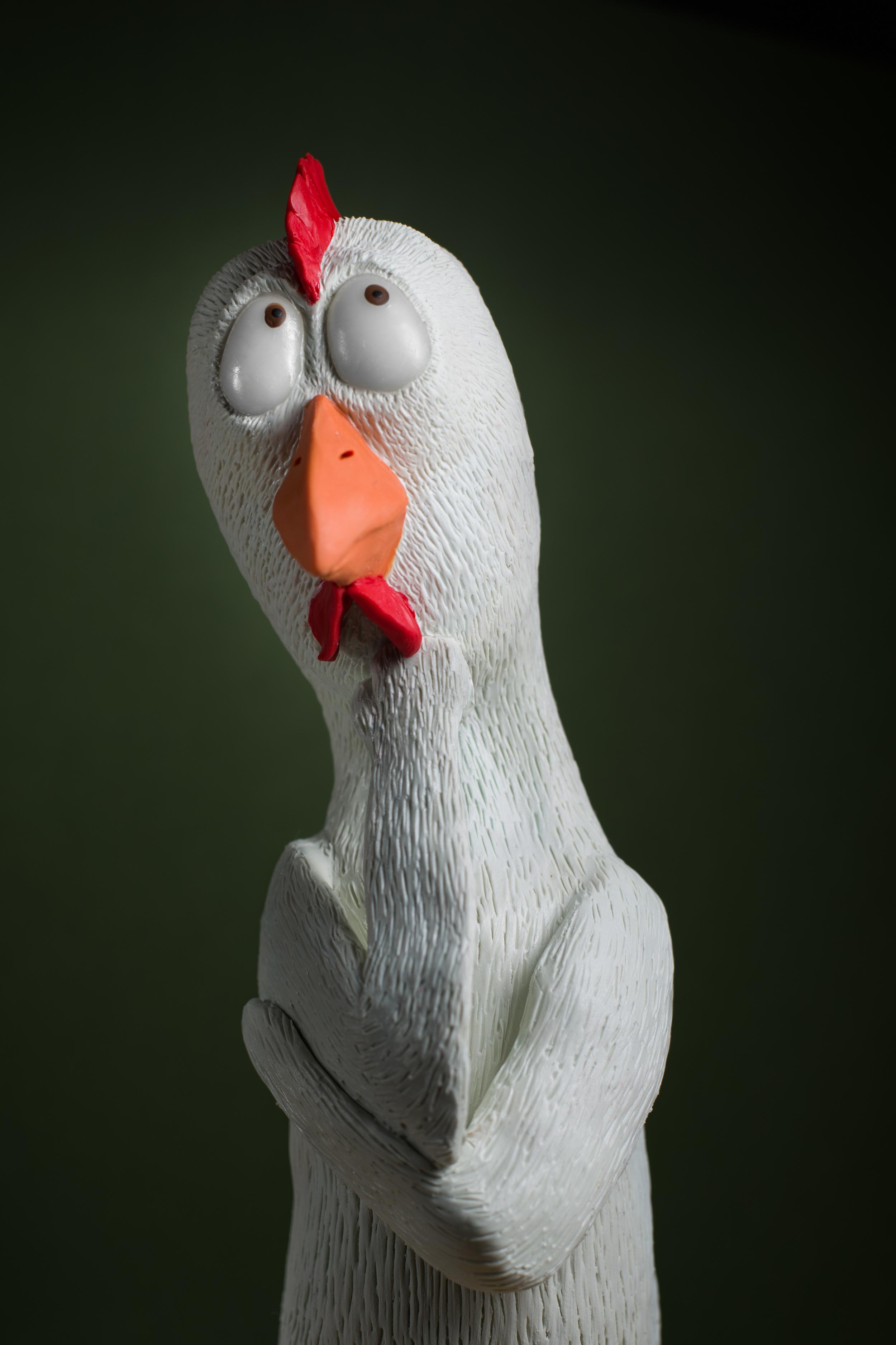 Thinkin' Chicken