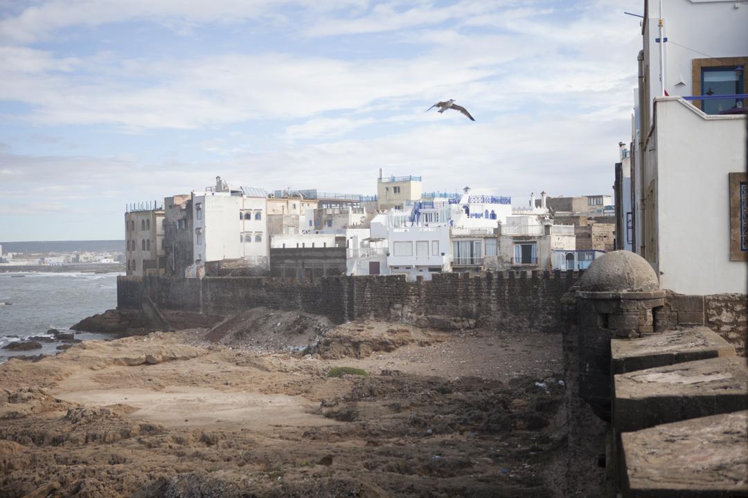 Essaouira_RebeccaJudy