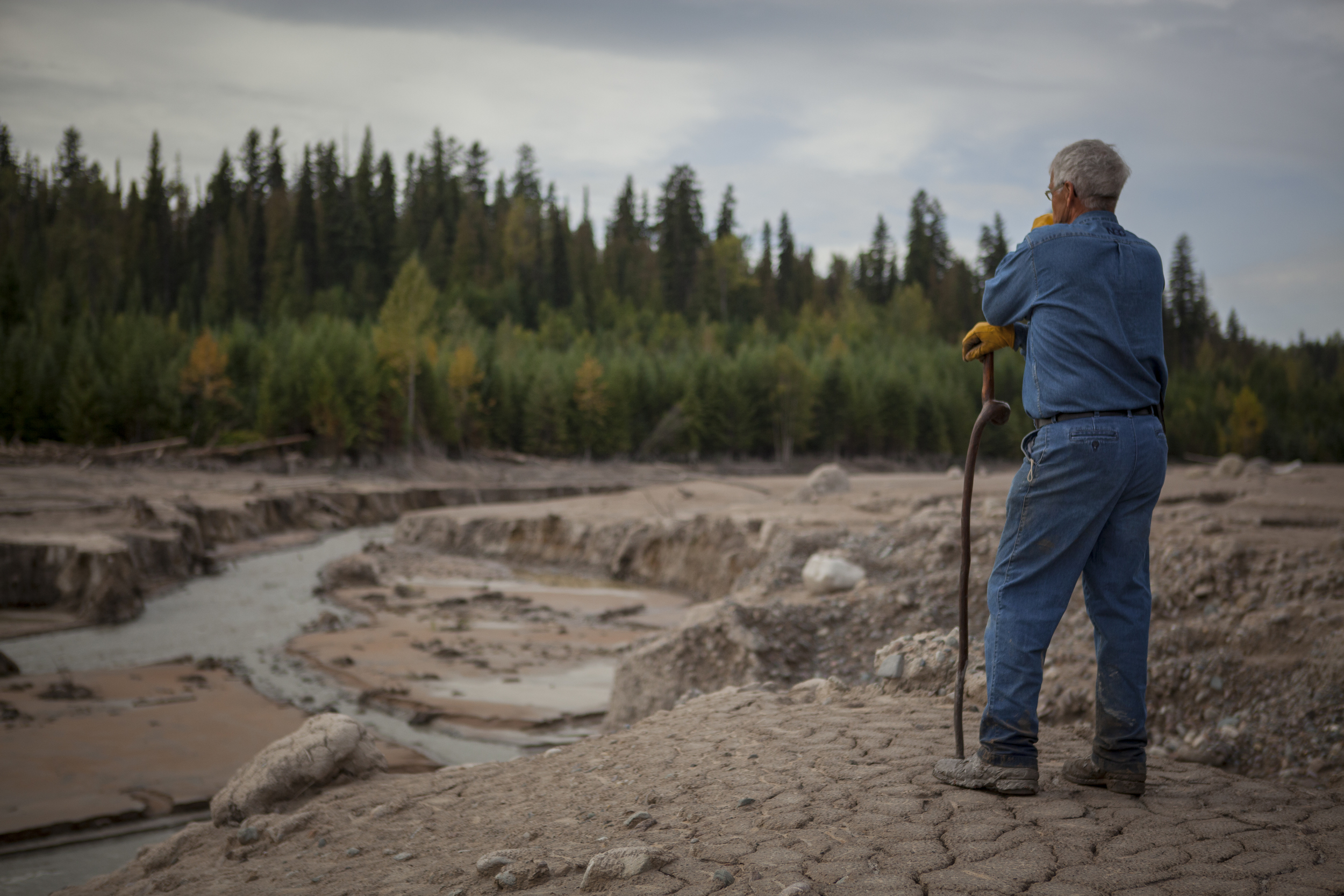 Lionel  Guiltner looks out on a destroyed Hazeltine Creek near the Mount Polley Mine, Likely, British Columbia, 2014.