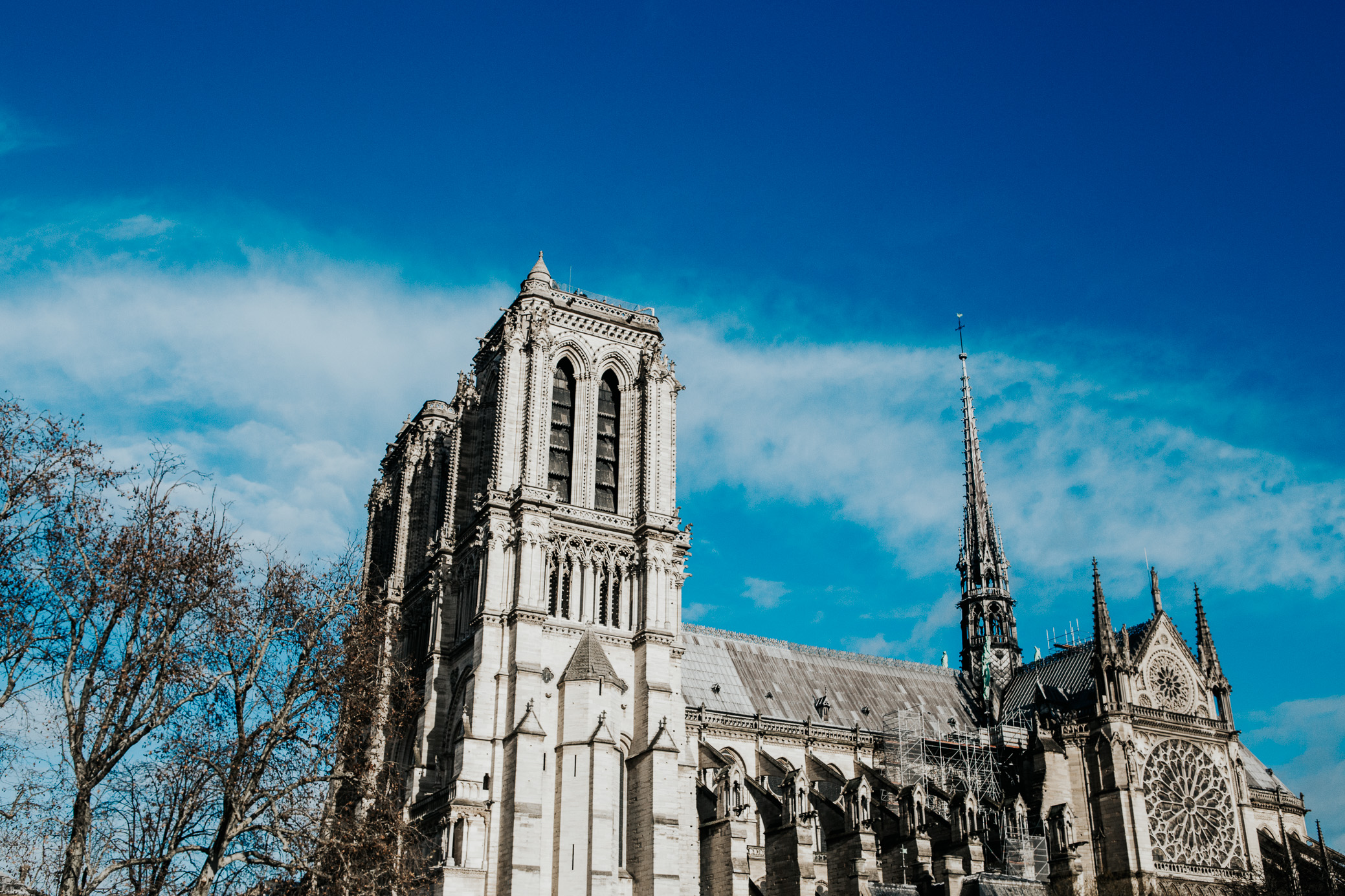 Notre Dame Cathedral | Paris, France | December 9th, 2018 | (Photo by David A. Smith / DSmithScenes)