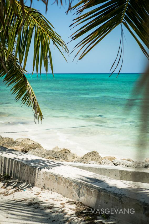 bahamas2014-web-3665.jpg
