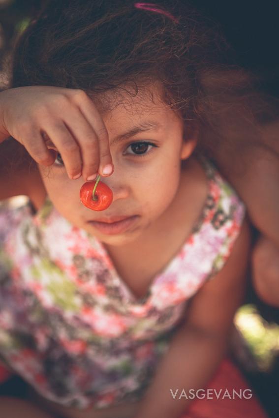 cerescherries-web-0953.jpg