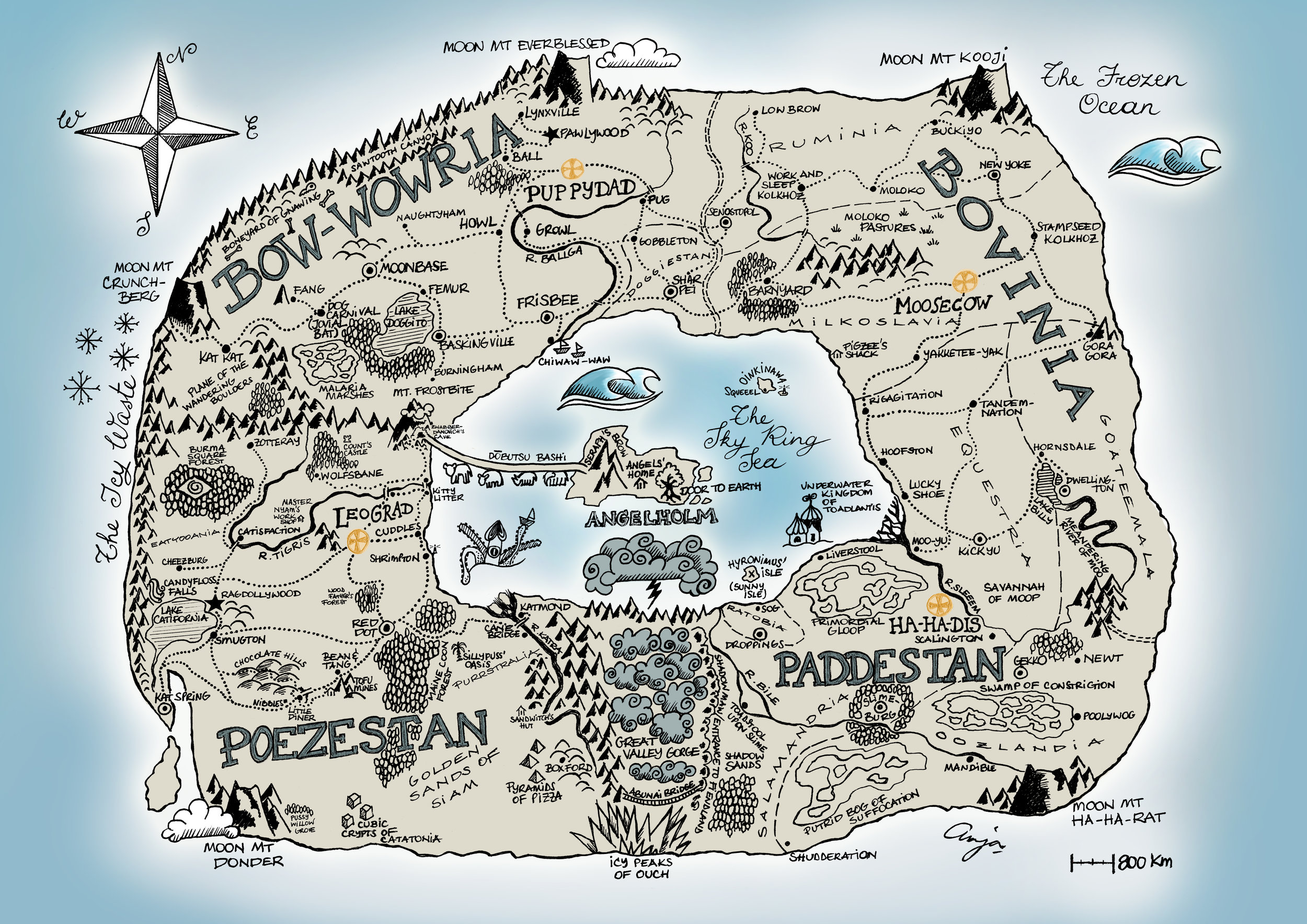 The contemporary map of Animus