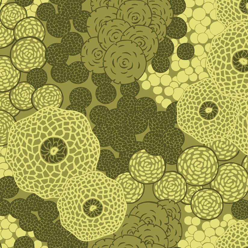 Fungal Pattern