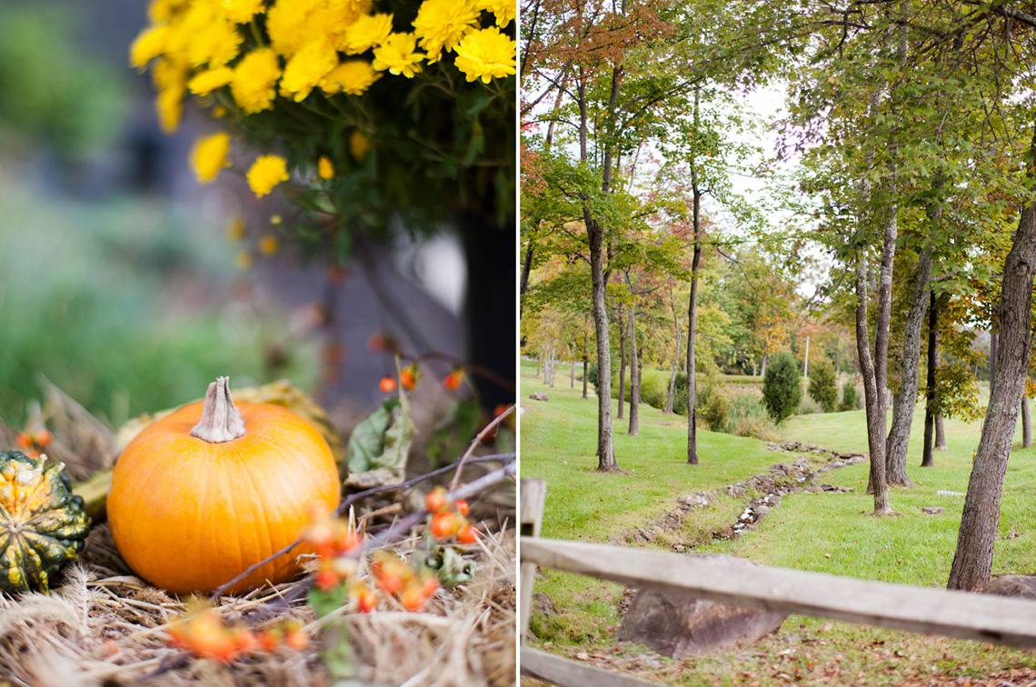 2-Wedding-Photography-York-PA-Ken-Bruggeman-Photography-Pumpkin-Trees-Outdoors.jpg