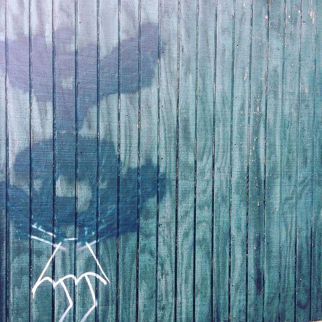 #embracethebuff #graffitiremoval #staybuffed #urbanart #streetart #okcart #buffart #okc #art #painting