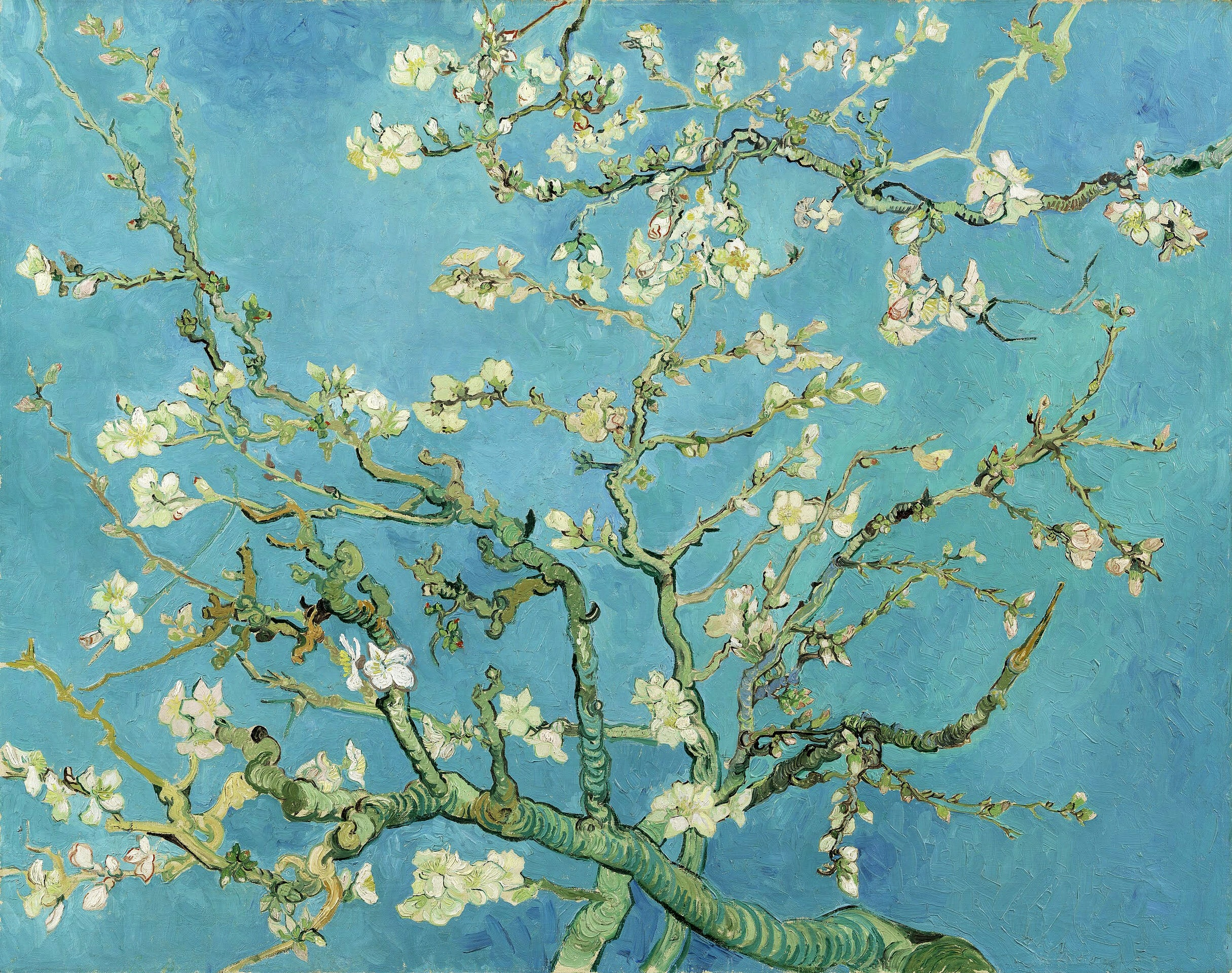 Almond blossom by Vincent van Gogh 1890