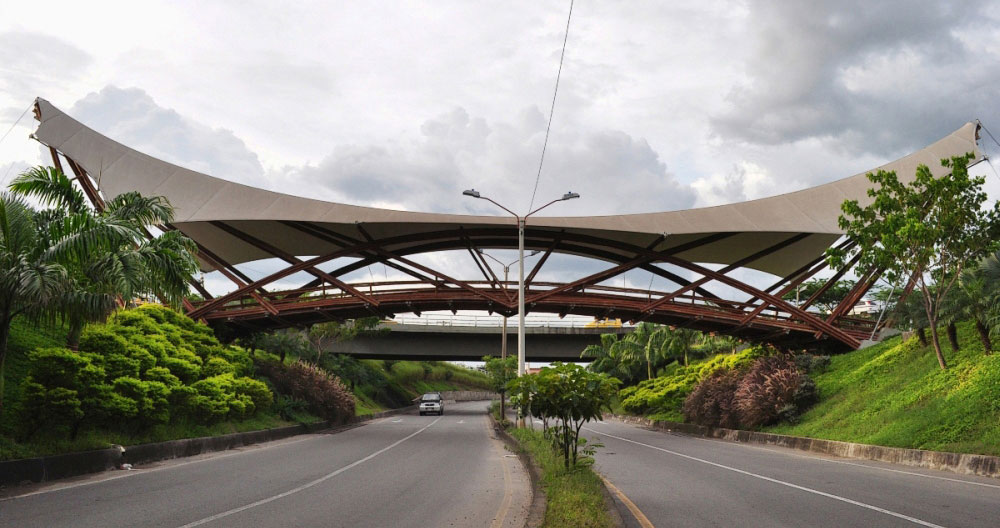 Guadua Bamboo Bridge in Colombia