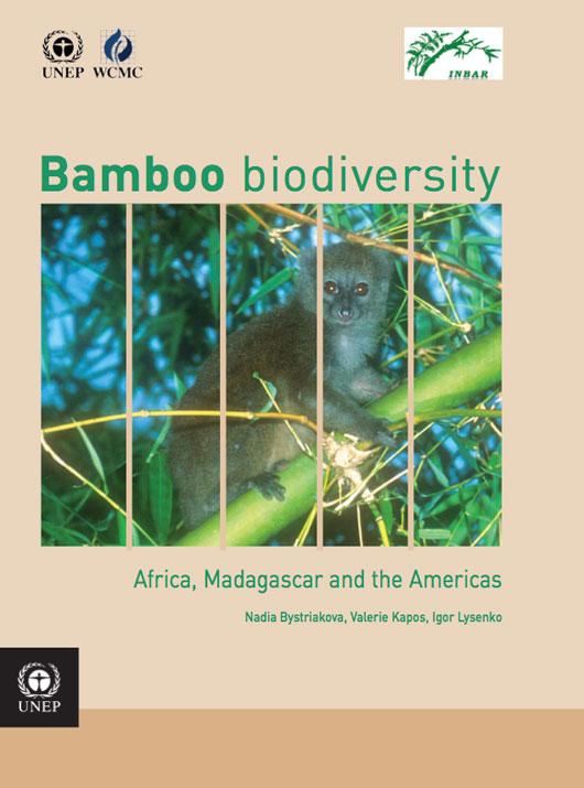 Bamboo-Biodiversity-Americas.jpg