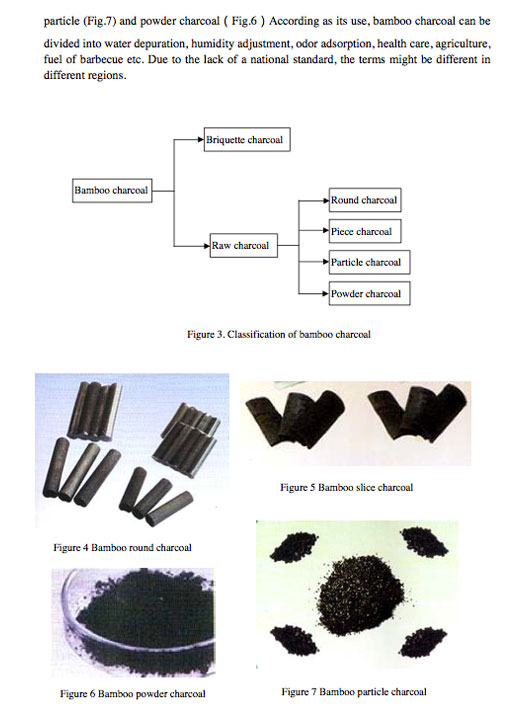 Bamboo-Charcoal-Training-Manual.jpg