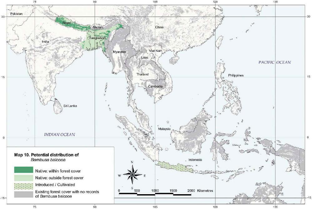 Bambusa balcooa Distribution Map