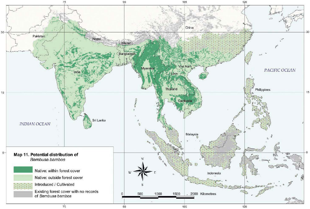 Bambusa bambos Distribution Map