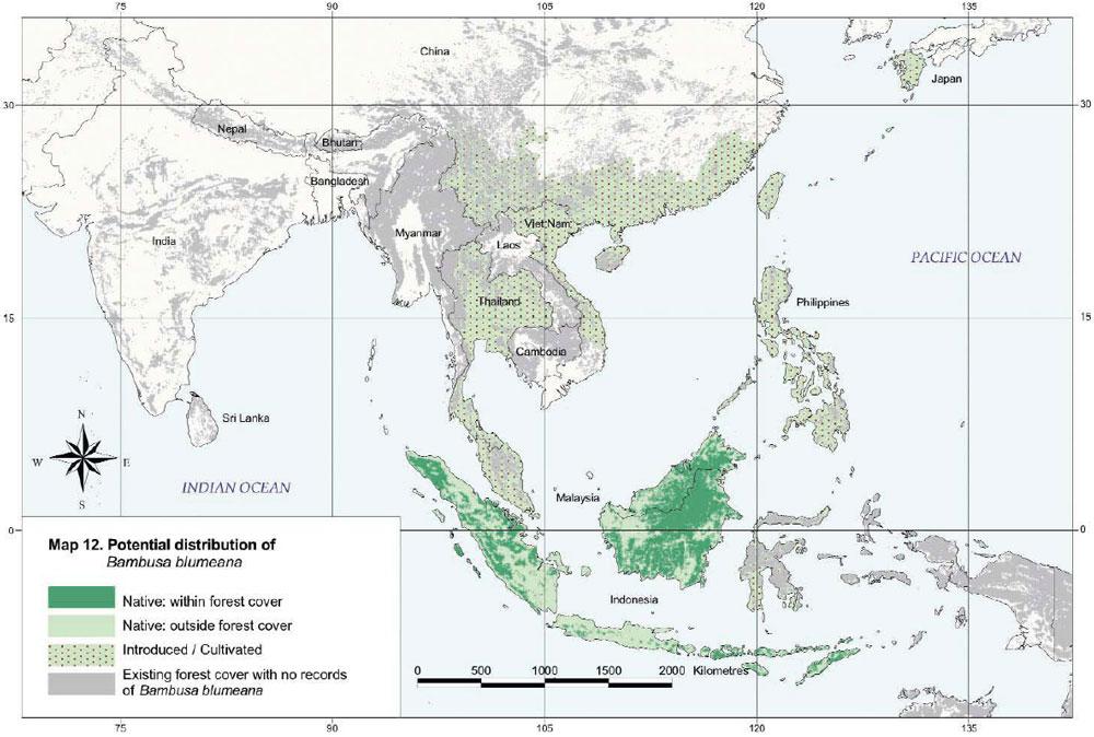 Bambusa blumeana Distribution Map