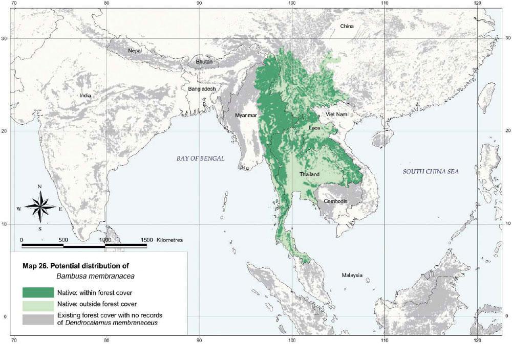 Bambusa membranacea Distribution Map