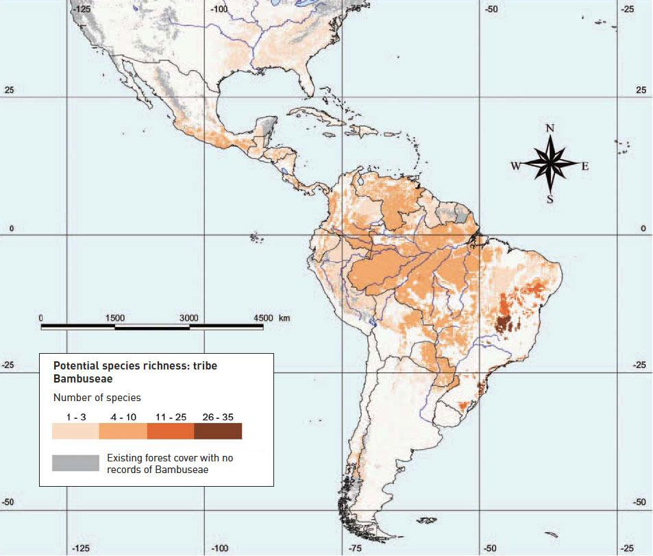American Bamboo Distribution Map