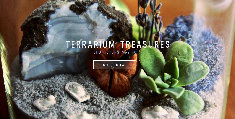 Terrarium Shop