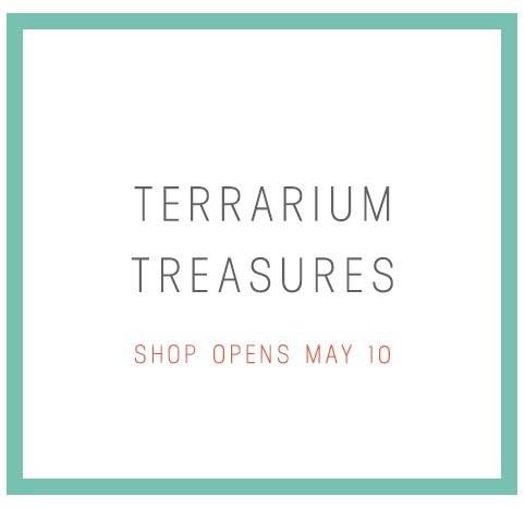 Terrarium designs & DIY kits that will blow your mind.