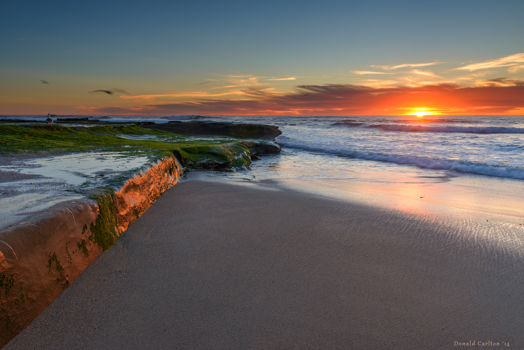 Donald_Carlton_Landscape-010.jpg