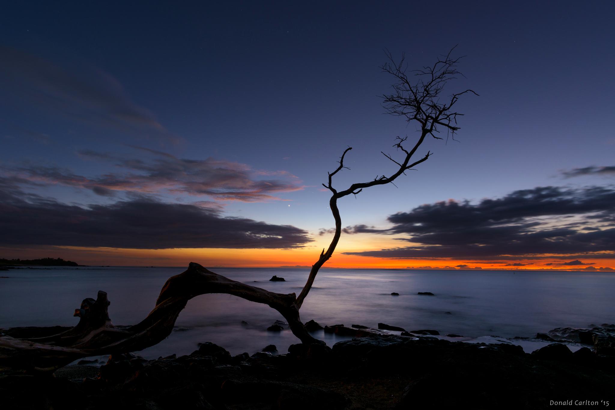 Donald _Carlton_Landscape-027.jpg