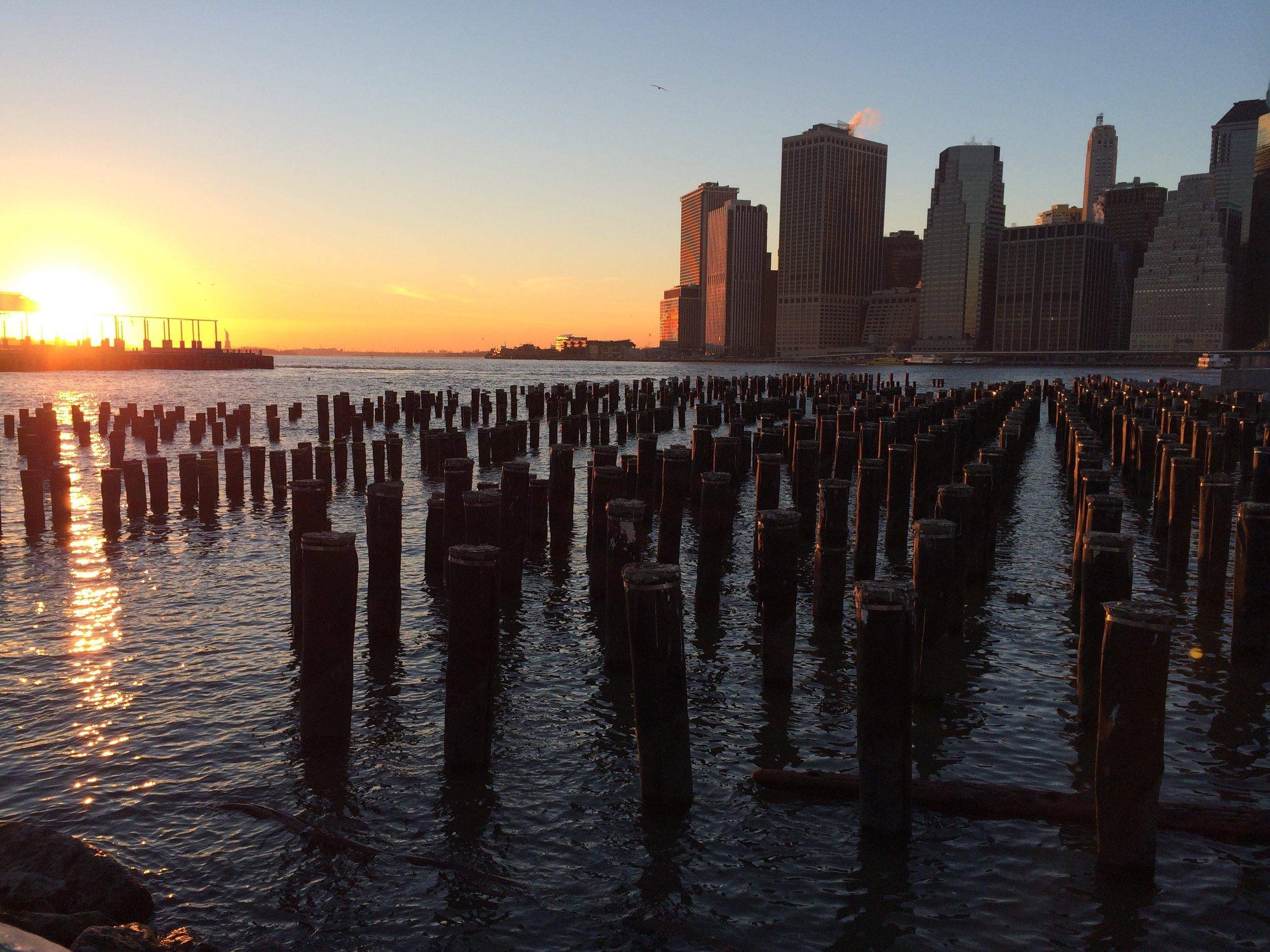 Dead piles at sunset, Brooklyn.jpg