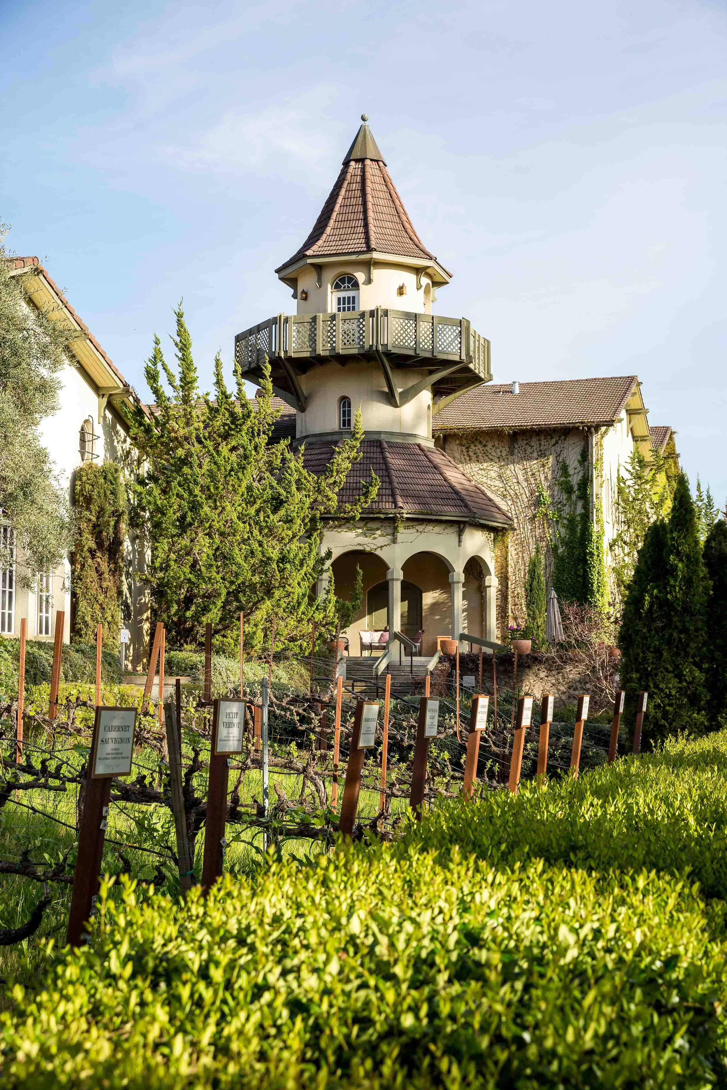 Women in the Napa and Sonoma wine world.