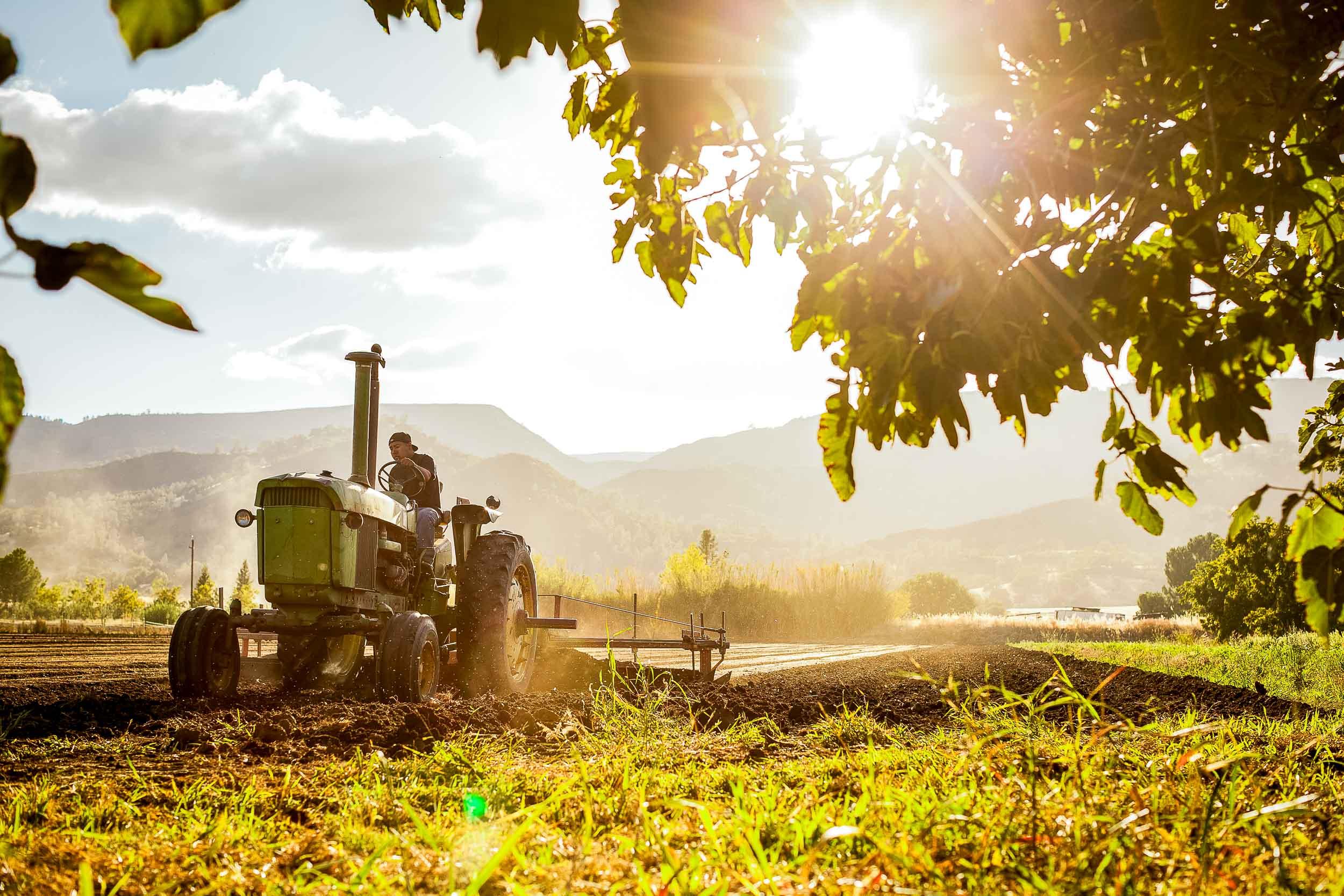 NatandCody-Agriculture-01.jpg