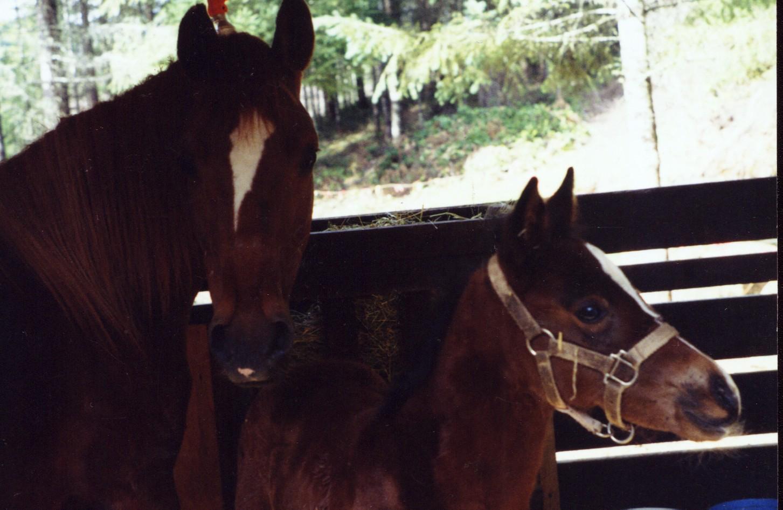 Kassy and Fatima, 1992 Photo Credit B. Till