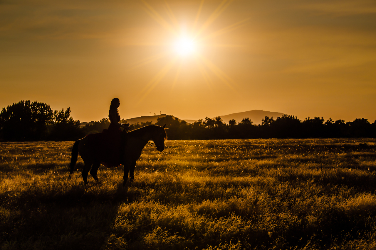 leslie brown athens horse photographer rachael renee photography Web-35.jpg