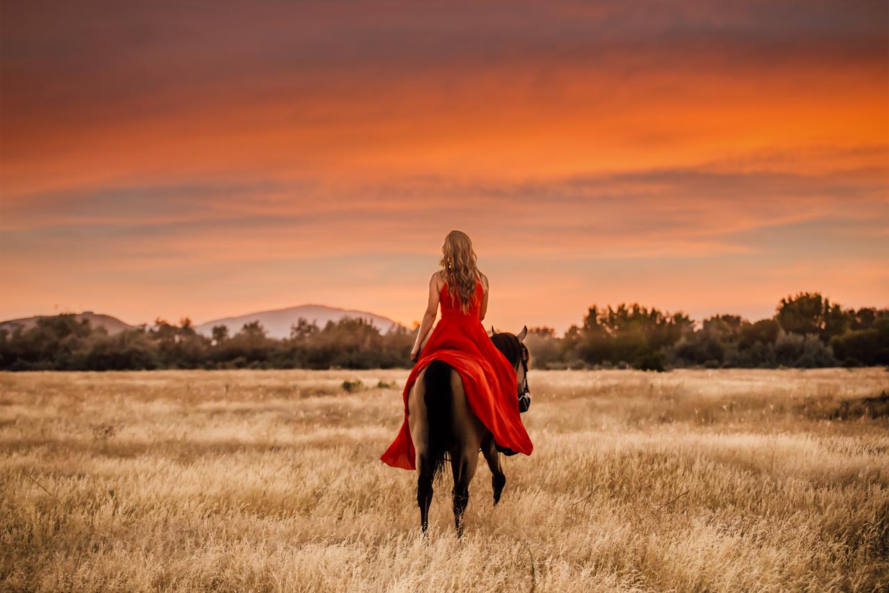 leslie brown athens horse photographer rachael renee photography Web-41.jpg