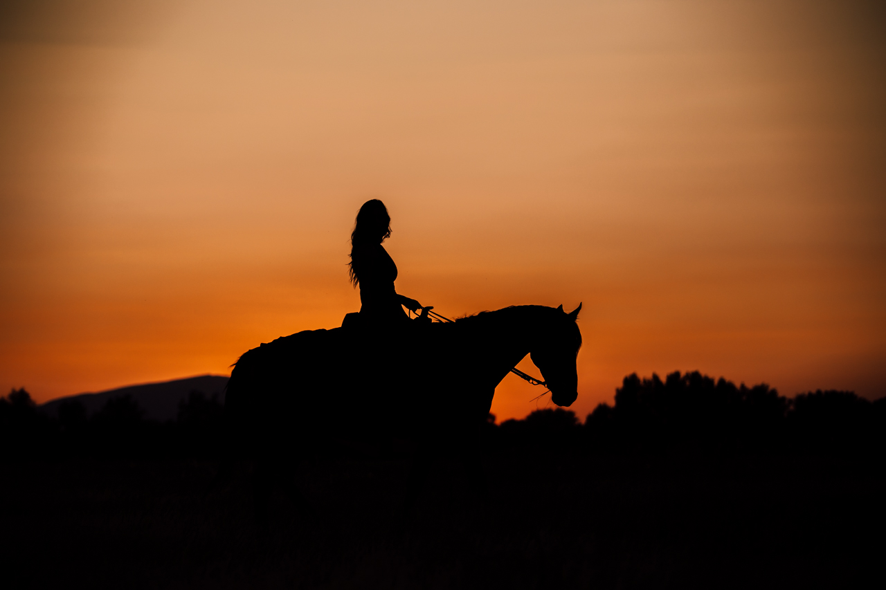 leslie brown athens horse photographer rachael renee photography Web-43.jpg
