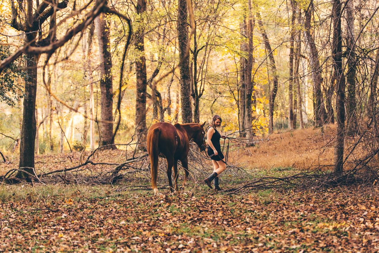 jessica and conan - rachael renee photography athens equine photography Web-15.jpg