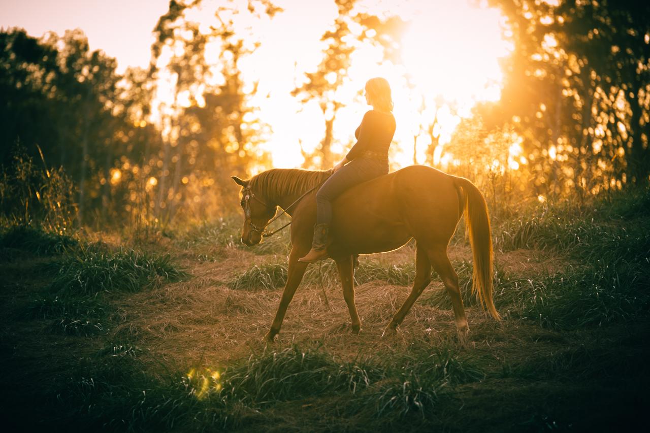 jessica and conan - rachael renee photography athens equine photography Web-31.jpg