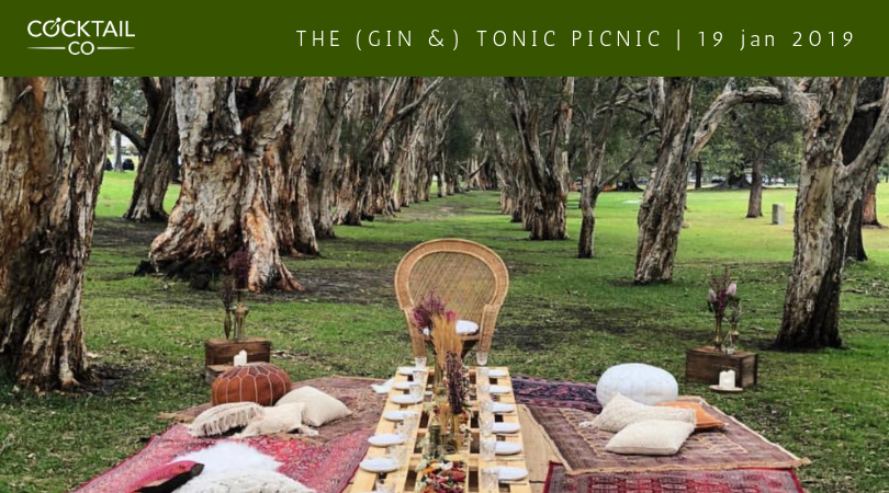 Gin and Tonic Picnic Sydney 2019