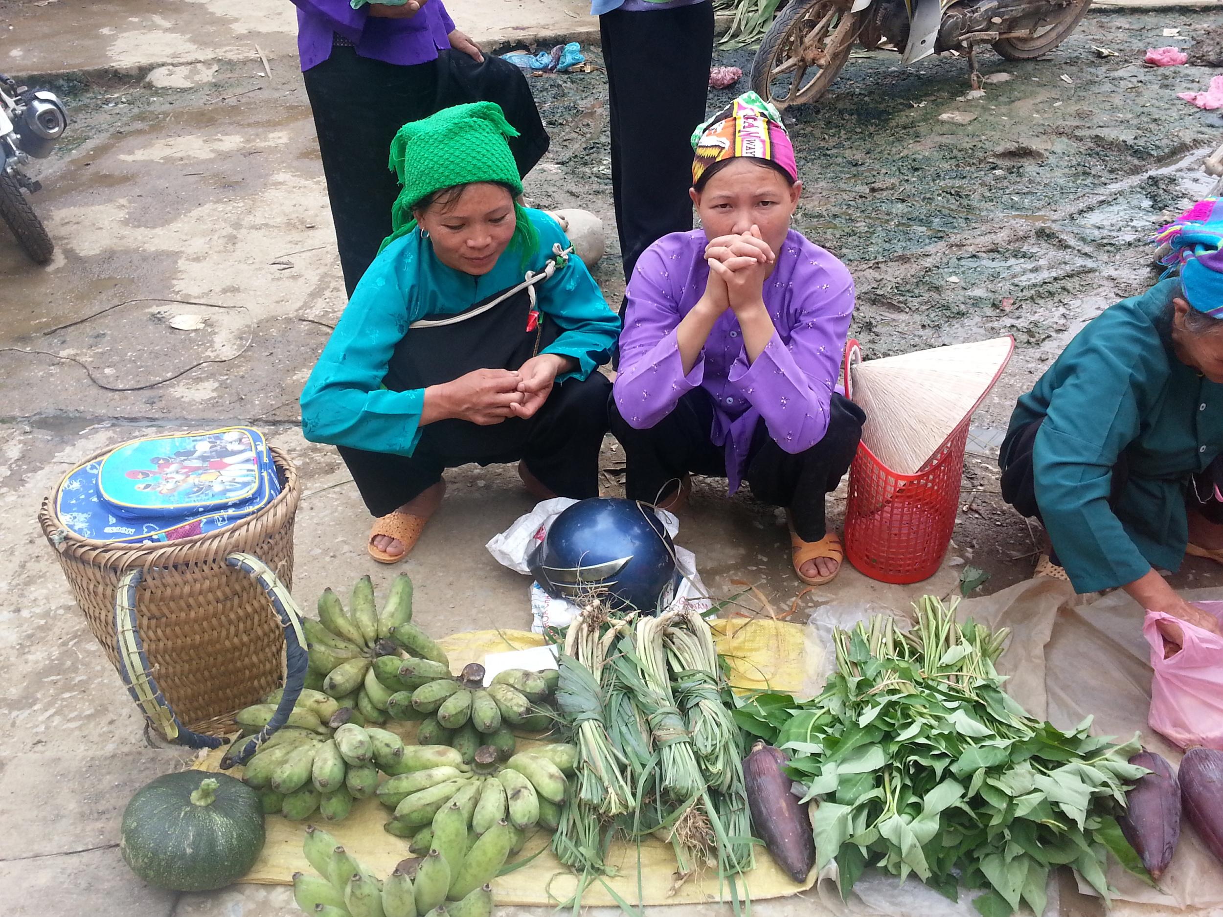 Vietnam possible 1 copy.jpg