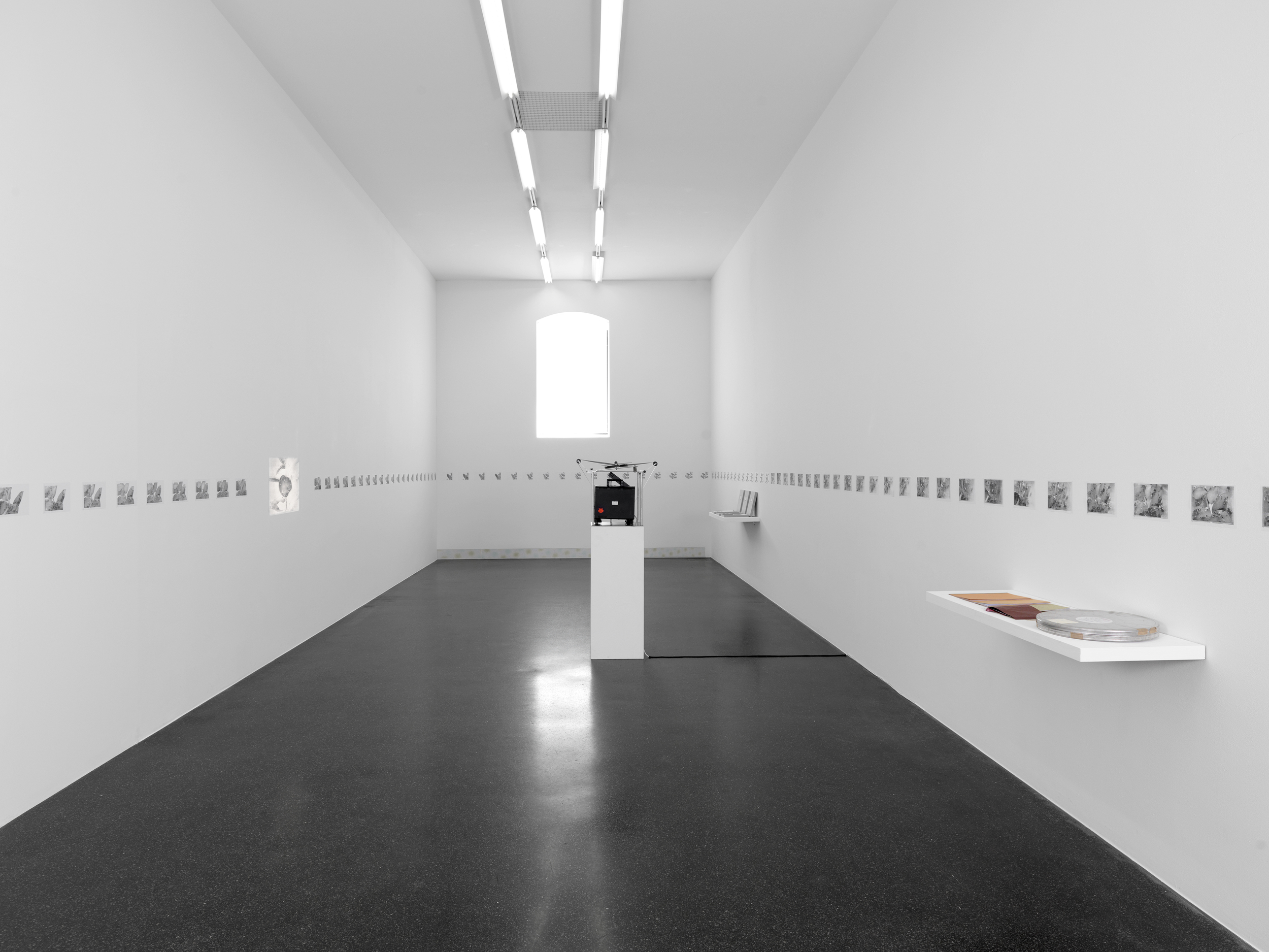 Galerie Francesca Pia, Zurich | Thomas Bayerle | 2014