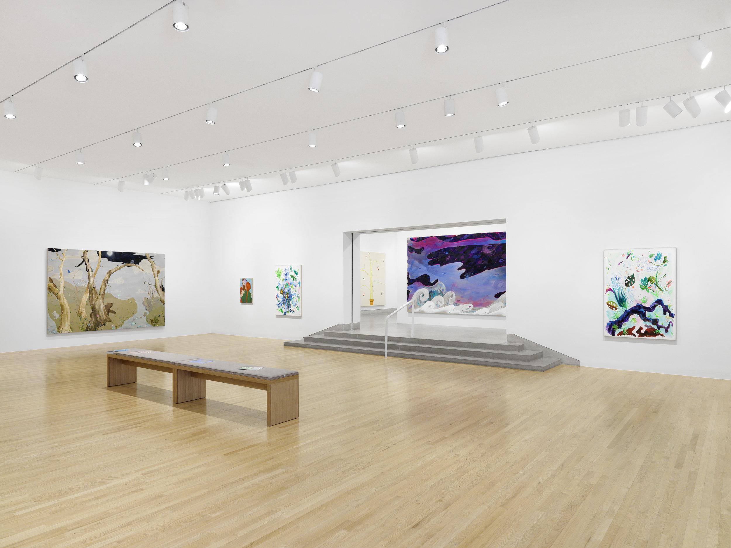 DMA - Dallas Museum of Art - Dallas | Laura Owens | 2018