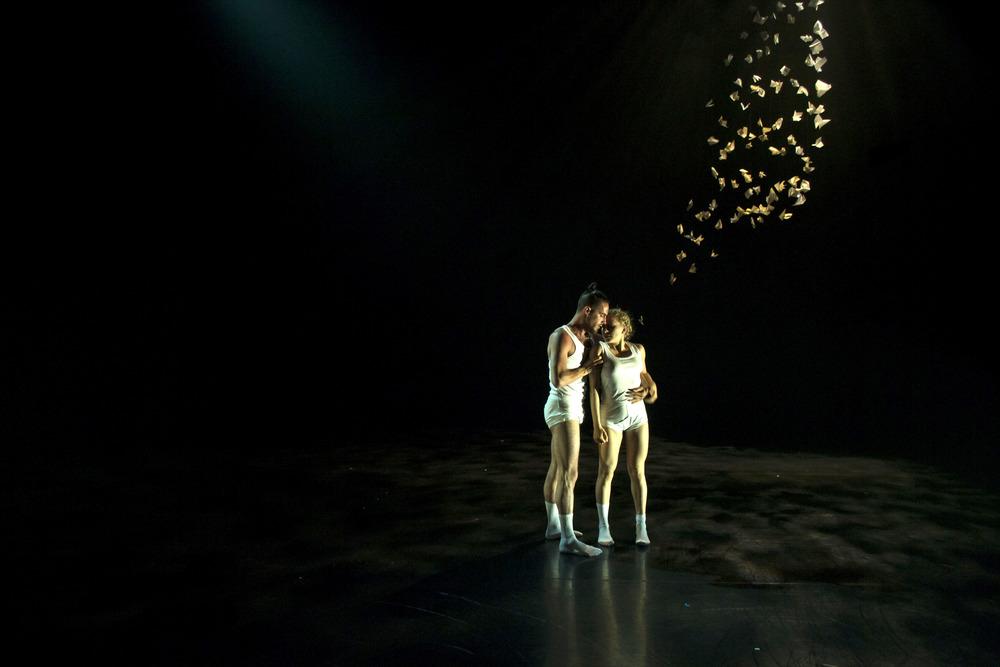 APPLICATION IMAGE- NATIONAL DANCE COMPANY DESIGN.jpg