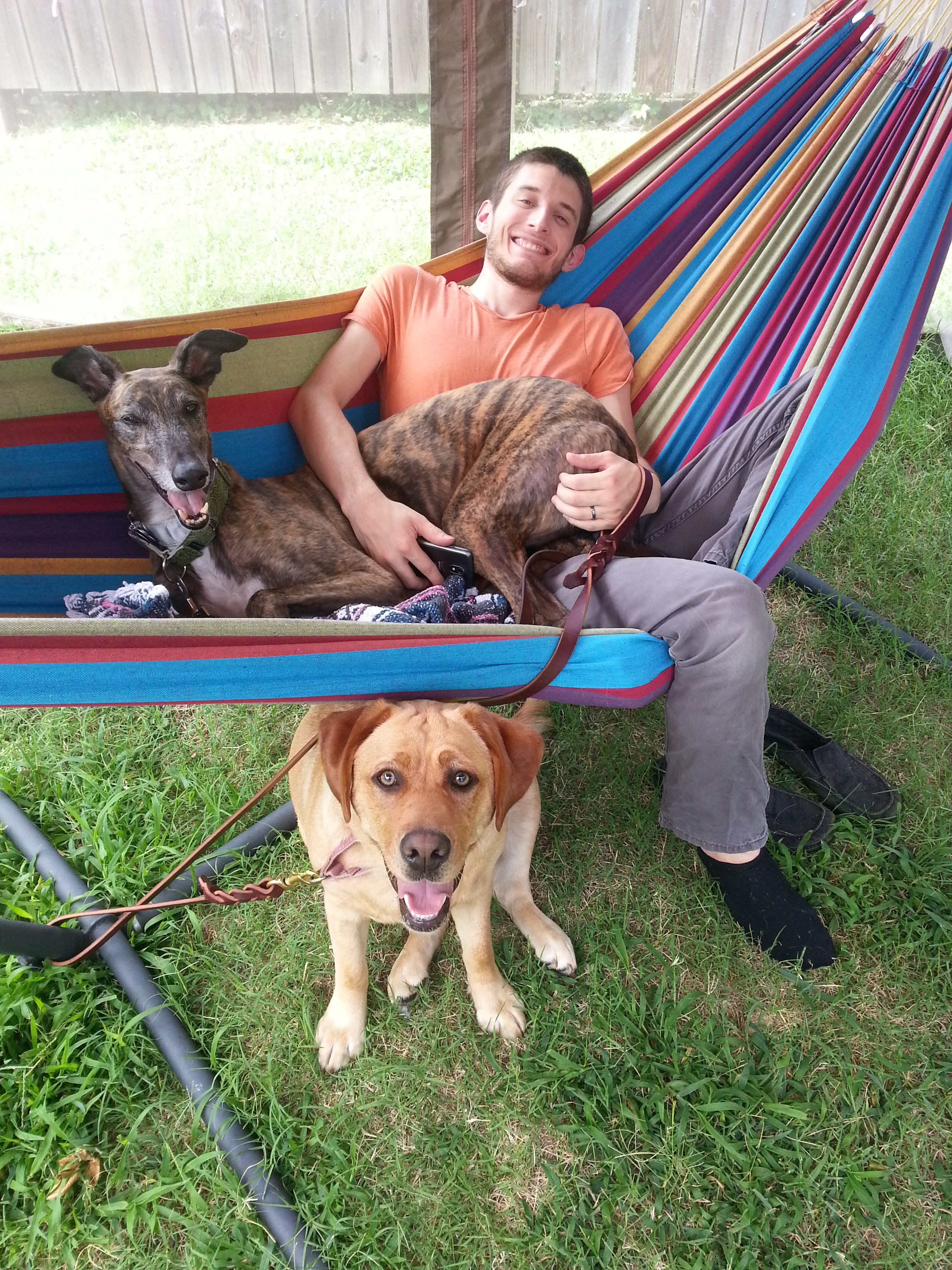 Some of Luke's new buddies include Laura Graham's ( Ambre's mom) greyhound Jude and Jude's buddy Sage.