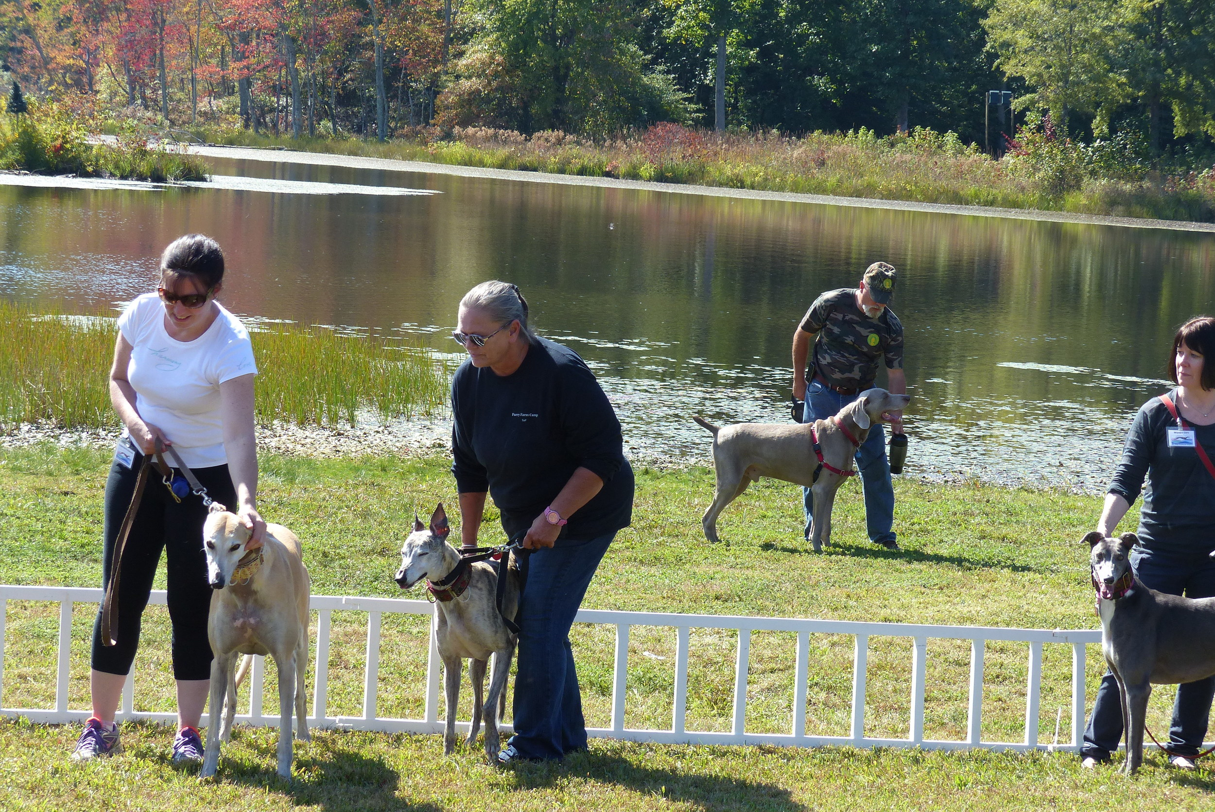 Christine with Solo, Just to her right is Gracie who is being handled by one of our new friends at Furry Farm Dog Camp.