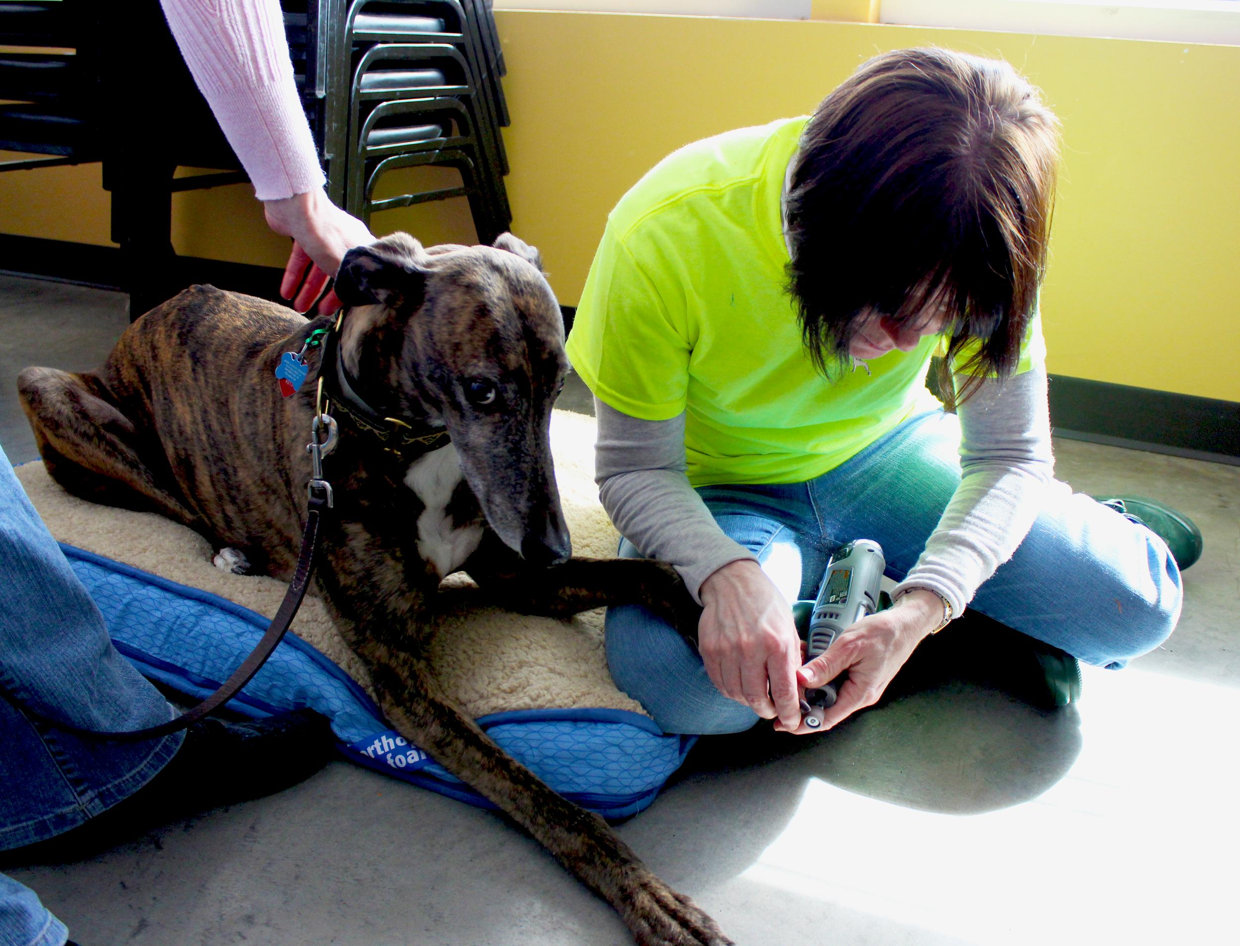 Wendy treats an apprehensive patient.