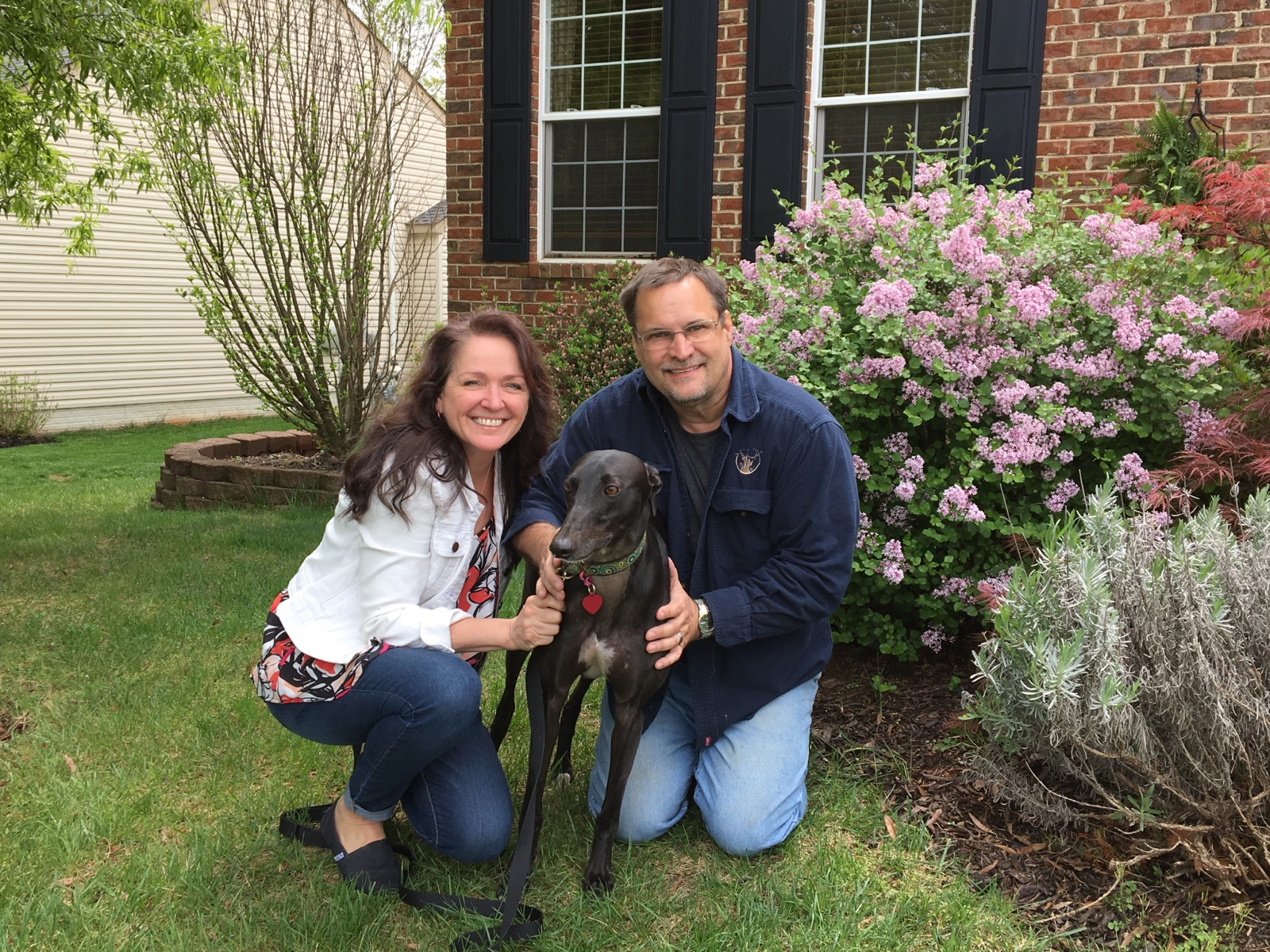 Peggy and her husband Kevin recently agreed to become fosters for our group. They had a greyhound, Nala, and decided they wanted to fill the home with another on a temporary basis...  That was not to be! They fell in love with their foster, Midnight, now called Pepe' and once again have a home full of Grey love!  Peggy promised she won't adopt all the Greys she fosters....or will try not to...we shall see!