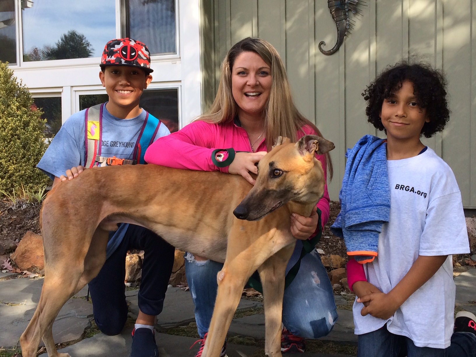 "Kristina & Will (not shown) along with her 2 sons adopted a beautiful red male, Bocs Goldberg. (now Cash). Cash will enjoy his retirement not only with the family but with their beautiful kitty who demonstrated that she may want to get to know a Grey! Please welcome them to the  BRGA ""clan""!"