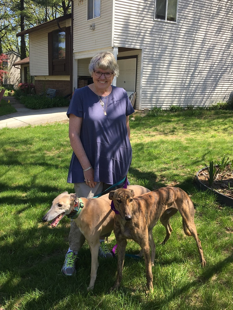 Springtime Greyhounds are coming!   After a long winter,  we can happily announce spring and the arrival of Nation, now called Joey (brindle) to his new forever home with Judy and her sweet girl, Heidi.   Please welcome Judy, Joey and Heidi into our BRGA pack!
