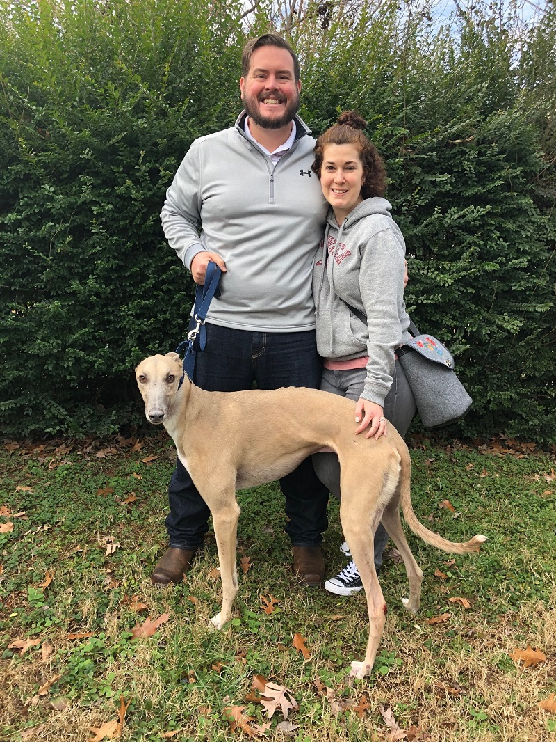 RINGING IN THE NEW YEAR WITH OUR NEWEST ADOPTED FAMILY!  On January 1, 2019, Patches, one of BRGA's sponsored broken leg dogs finally has his new home! Andrew and Christine had originally applied to foster a Greyhound as company for their Grey at home. When they heard about Patches, a gorgeous blue fawn male, they said, YES-we want him in our home! Patches has been recovering in fabulous foster care since November. Finally Christine and Andrew could not wait 1 day longer and took Patches home to enjoy the couch and his new Greyhound friend!  Congratulations to Christine, Andrew and Patches!! WHAT A HAPPY NEW YEAR FOR ALL!