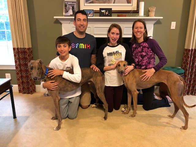 Congratulations to Matt, Cindy, Noah and Elsie with Blueberry (blue brindle) and B Gee (blue fawn). Blue and B Gee are a full brother and sister bonded pair who needed to be adopted together. Matt volunteered to drive down to NC to meet the drivers half way and bring them home. Noah has quickly become attached to Blueberry who is a quiet reserved boy and Elsie has bonded with B Gee who is a bit more spunky and likes to play with squeaky toys.   Please welcome Blueberry and B Gee to your new home!