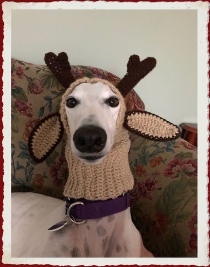 snood_reindeer_s550.jpg