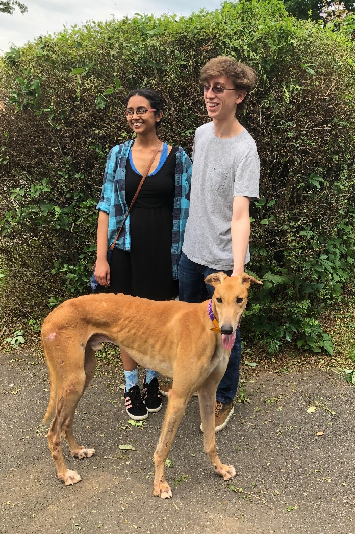 Scott is now a new Greyhound owner to PJ Better Days, now called Miko! Scott and his friend, Samyukta fell in love with Miko almost immediately! Miko has been exploring his new home with Scott's parents; loving the new dog bed and has mastered the stairs!  Congratulations to Miko and Scott!