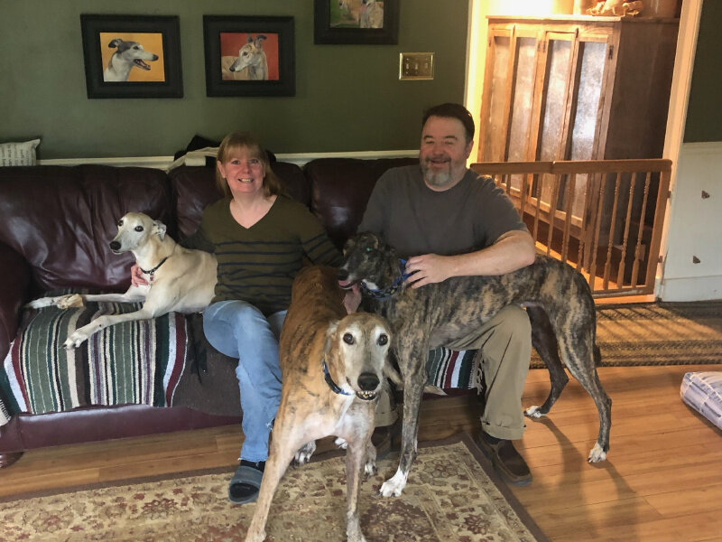 We are thrilled to announce that Wendy and Mike have adopted a very special 2 year old brindle male, Ford. Ford has Progressive Retinal Atrophy (PRA). It's a degenerative eye disease that will ultimately lead to completely blindness. But that hasn't stopped Ford from learning his way around his new home! He has several Greyhounds as brothers and sisters who will teach him the way. Wendy has already been teaching Ford Nosework to help him know where things are. At an early stage, hes already scored 100%!  Ford holds a special place in BRGA's hearts and we know he is exactly where he needs to be. Thanks to Wendy and Mike to opening their house and their hearts to this very special boy.
