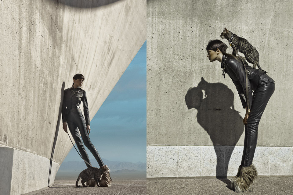 Animal Instinct for Hong Kong Tatler